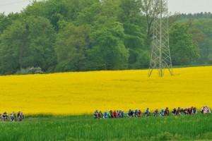 10. Belmer Radmarathon